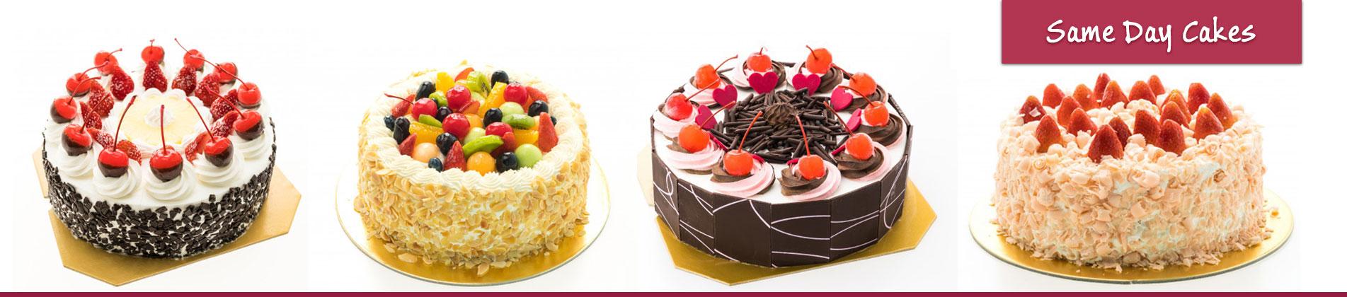 Same Day Cake